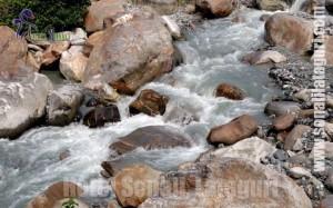Travel Lataguri Dooars / Duars, places near Gorumara